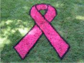 Breast Cancer Awareness Stencil Kit (This Item Ships Free)